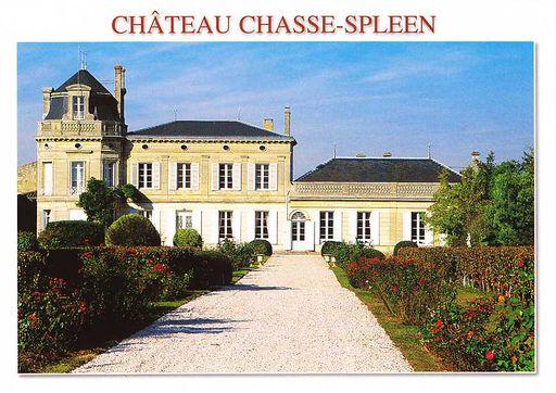 Chasse-Spleen Castle (33)