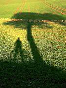 Schattenreiter
