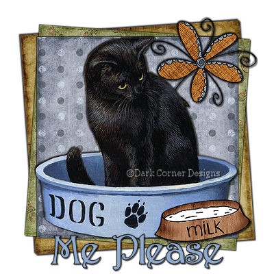 dcd-Me Please-Cat