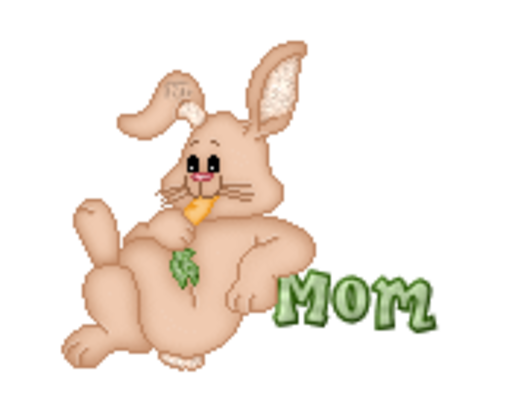 Mom - BunnyWithCarrot