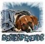 1BestestFriends-blujeanpup-MC