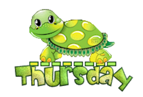 DOTW Thursday - CuteTurtle