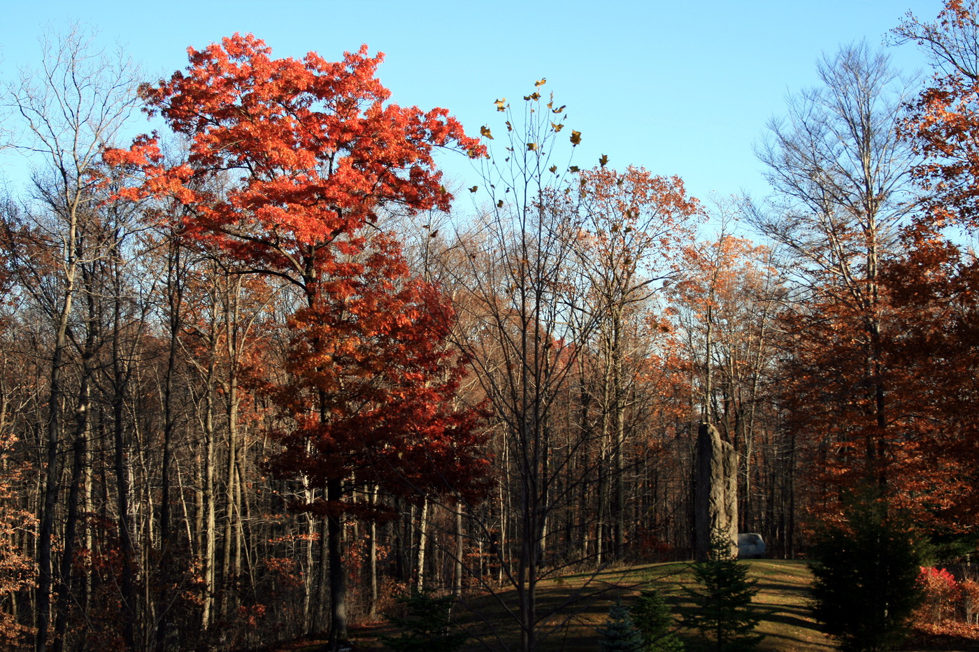 Fall in the Pocono Mountains