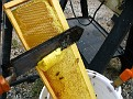The Process of Extracting Honey / Electric Hot Knife for trimming off the wax cappings to expose the flowable honey for extraction.