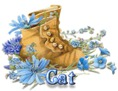 Cat - BootsNBlueFlowers