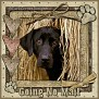dcd-Going No Mail-In The Hay