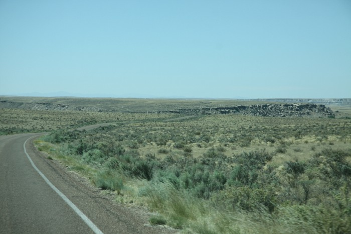 Petrified Forest National Park (27)