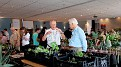 005.6 Mr Harry Mays UK, from Alsterhaworthia and Frank Hoste from Belgia talk about Plants