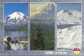 Mount St Helens NP