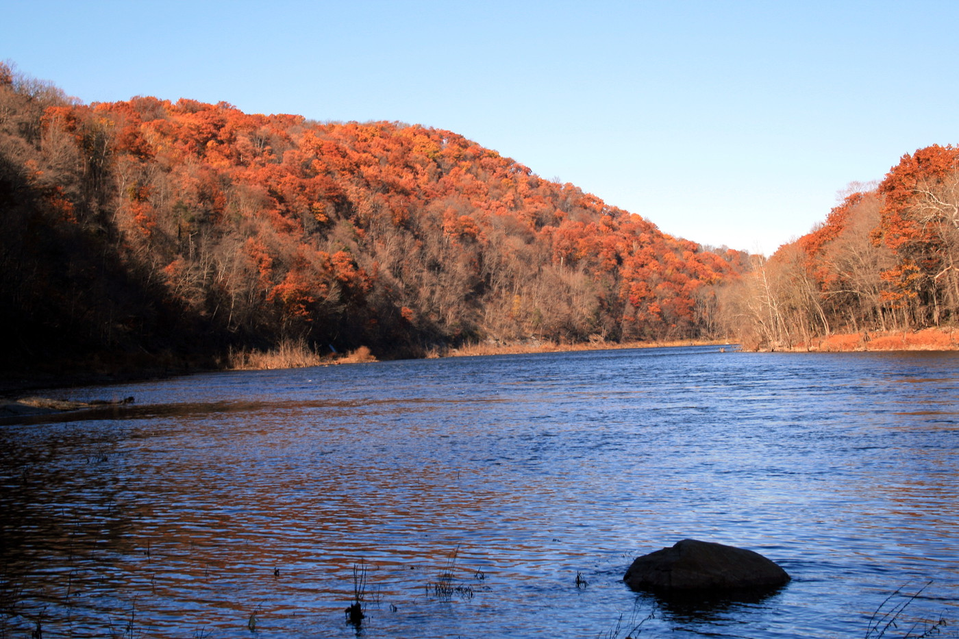Pennsylvania River and Scenic Trees
