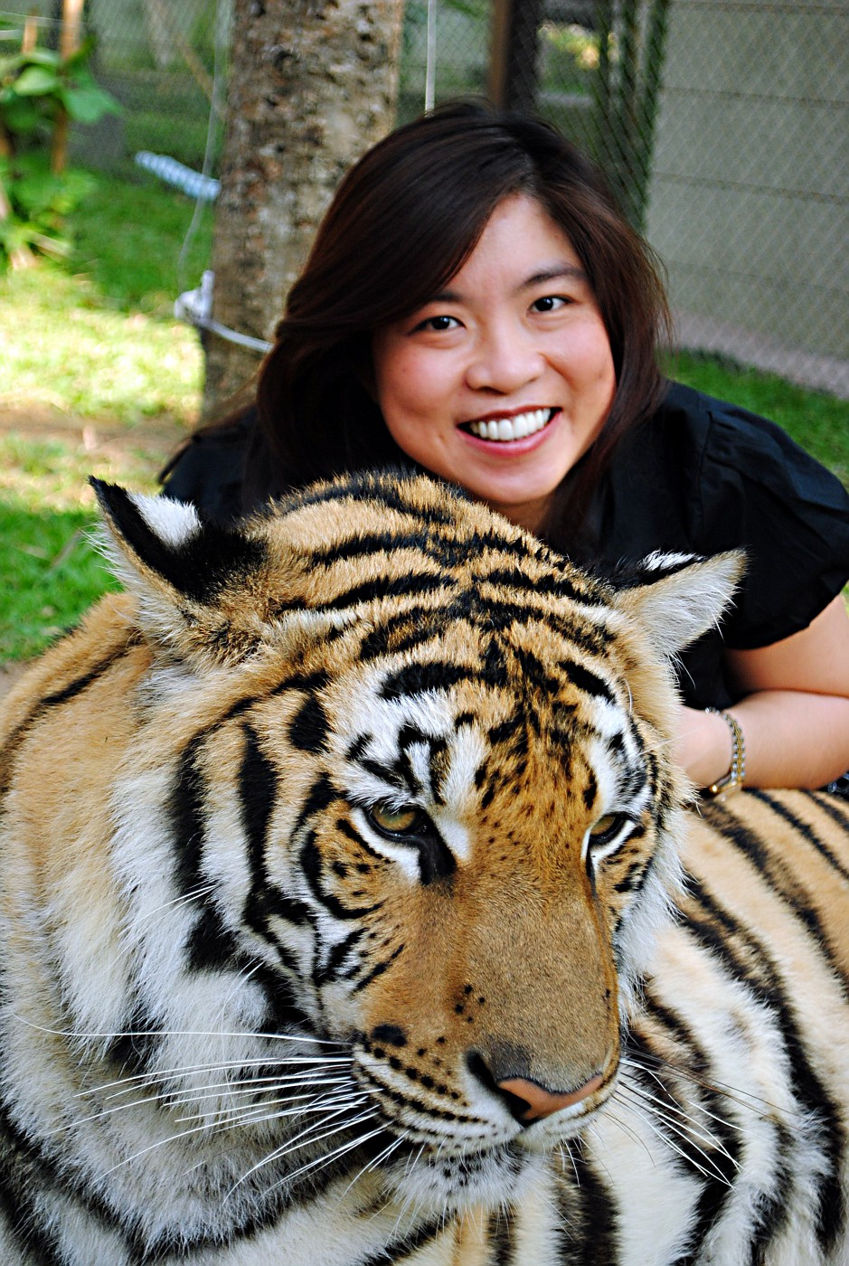 026) Cindy with adult tiger