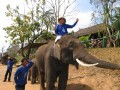 Mae Ping Elephant Camp near Chiang Mai in Northern Thailand Day 12 Feb 23-2006 (108)