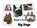 dcd-Big Hugs-Adopt a Friend.jpg