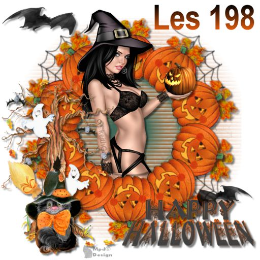 VB Les 198