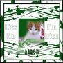 Aaron-gailz-Kiss Me Im Irish QP by Cassie