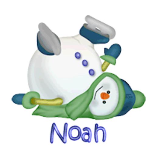 Noah - CuteSnowman1318
