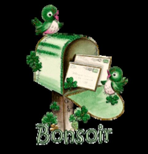 Bonsoir - StPatrickMailbox16