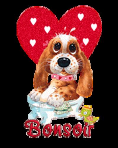 Bonsoir - ValentinePup2016