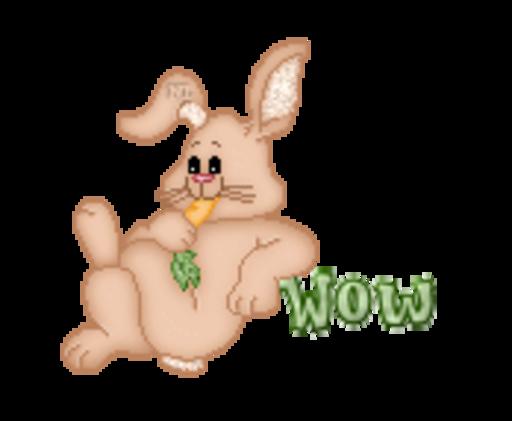 Wow - BunnyWithCarrot