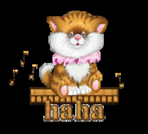 haha - CuteKittenSitting