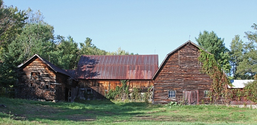 Barn with Vines #5