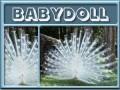 babydoll-gailz0304-albino peacock.jpg