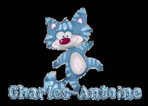 Charles-Antoine - DancingCat