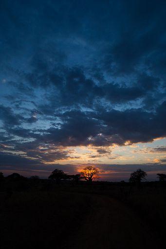 Tanzania 1 789.jpg