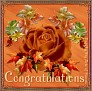 fallrose-congratulations