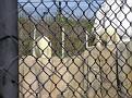 2007 Toledo Zoo 018