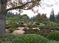 Woodley Park Japanese Gardeni015