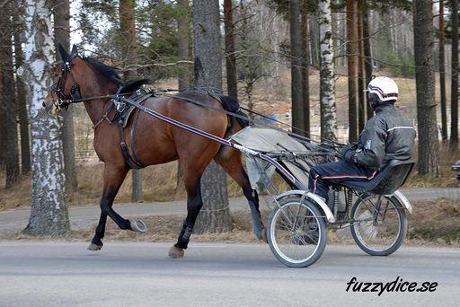 2017 Motorrevy0316