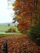 Der Herbst holt die kräftigen Farben aus dem Malkasten