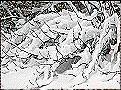 Schnee drückt auf die Zweige