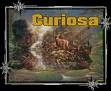 97-curiosa
