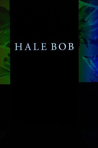 Hale Bob MiamiSwim SS18 001