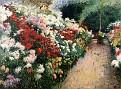 Chrysanthemums [1888]
