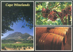 South Africa - Route 62 (World's Longest Wine Route)