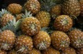 Ananas (Pine Apples)