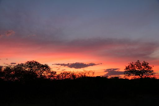 African Sunset 2018 October (75)