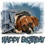 1Happy Birthday-blujeanpup